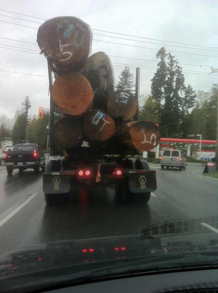 Vancouver Island highway scene