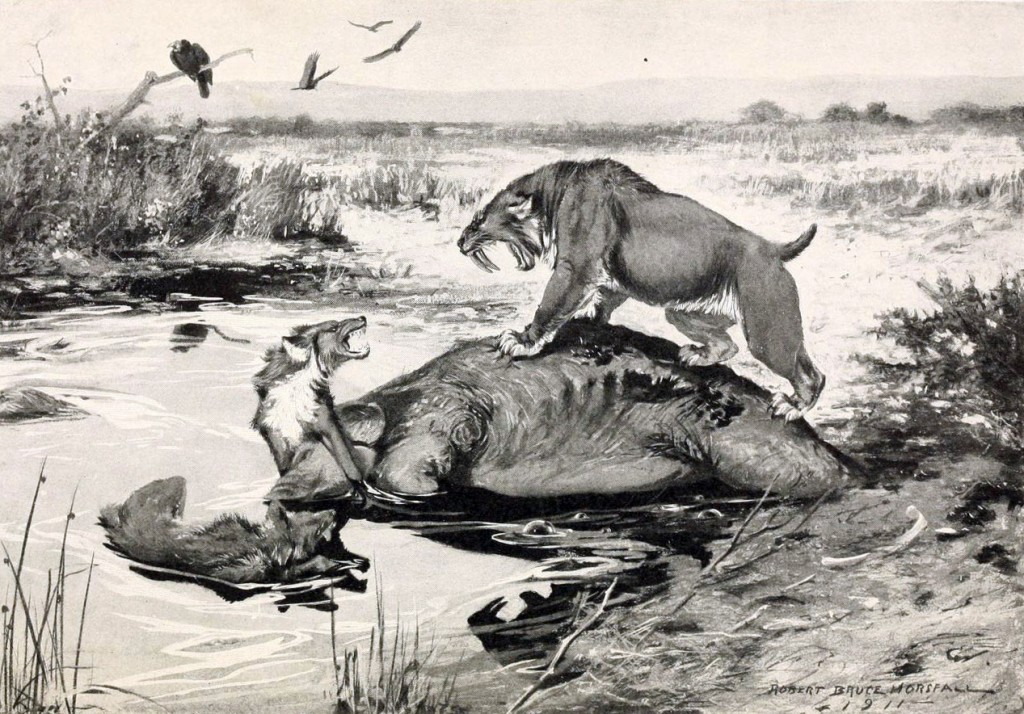 Smilodon_and_Canis_dirus