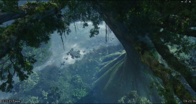 avatar5 Avatar Tree